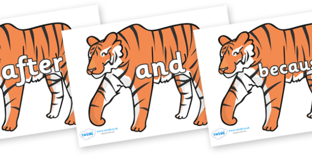 Connectives on Tigers - Connectives, VCOP, connective resources, connectives display words, connective displays