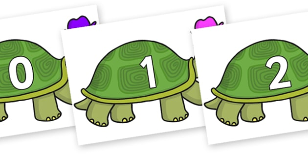 Numbers 0-50 on Tortoise - 0-50, foundation stage numeracy, Number recognition, Number flashcards, counting, number frieze, Display numbers, number posters