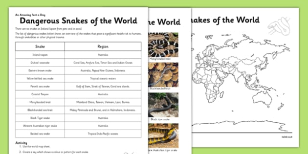 Dangerous Snakes of the World Activity Sheet - challenge, research, home, education, learning, animals, reptiles, venom, activity, information, safety, nature, dangerous snakes, physical geography, map, atlas, worksheet
