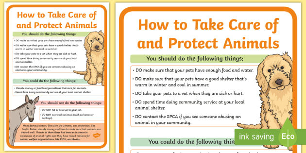 How To Take Care Of And Protect Animals A2 Display Poster