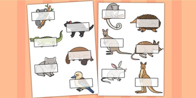 Australian Animals Self-Registration - australia, aus animal, aus