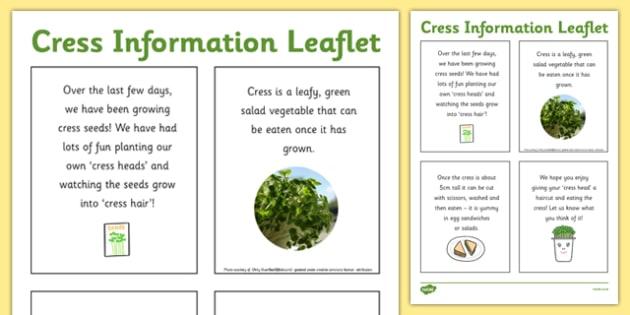 Cress Information Leaflet - cress, information, leaflet, info