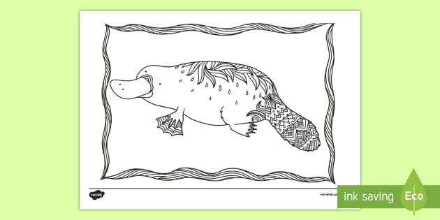 au t2 t 1315 platypus mindfulness colouring page english australian ver 1