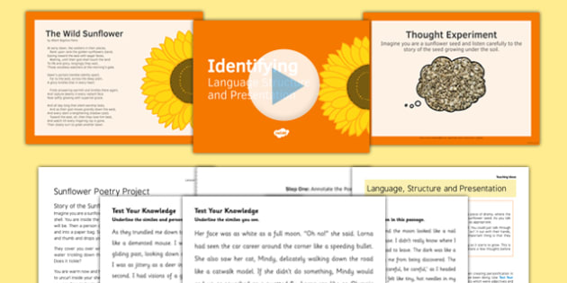 Identifying Language Structure Presentation Lesson Teaching Pack