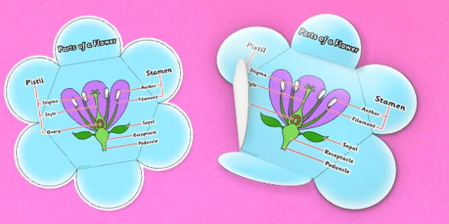 flower foldable template