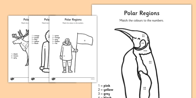 Polar Regions Colour by Number Counting Worksheet / Activity Sheet - polar regions, colour by number, colour, number, counting, activity, count, worksheet
