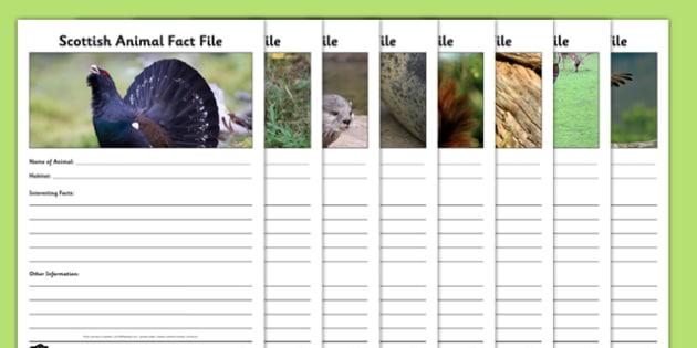 Scottish Animals Fact File Activity Sheet Pack - scottish, animals, factfile, fact, file, activity, sheets, worksheet
