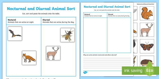 nocturnal and diurnal animals worksheet living things nocturnal diurnal. Black Bedroom Furniture Sets. Home Design Ideas