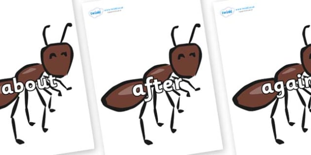 KS1 Keywords on Ants - KS1, CLL, Communication language and literacy, Display, Key words, high frequency words, foundation stage literacy, DfES Letters and Sounds, Letters and Sounds, spelling