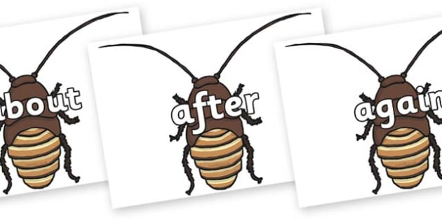 KS1 Keywords on Cockroach - KS1, CLL, Communication language and literacy, Display, Key words, high frequency words, foundation stage literacy, DfES Letters and Sounds, Letters and Sounds, spelling