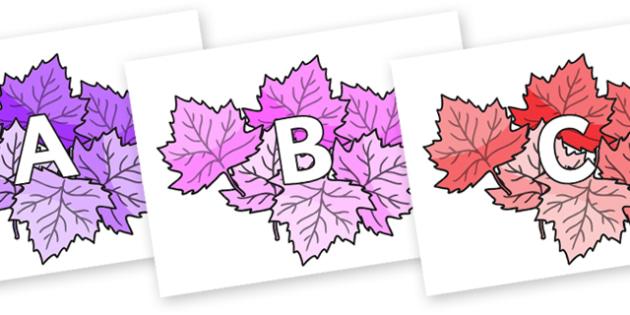 A-Z Alphabet on Autumn Leaves (Multicolour) - A-Z, A4, display, Alphabet frieze, Display letters, Letter posters, A-Z letters, Alphabet flashcards