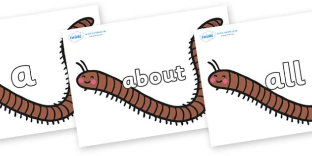 100 High Frequency Words on Millipedes - High frequency words, hfw, DfES Letters and Sounds, Letters and Sounds, display words