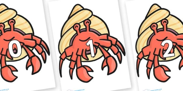 Numbers 0-50 on Hermit Crabs - 0-50, foundation stage numeracy, Number recognition, Number flashcards, counting, number frieze, Display numbers, number posters