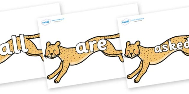 Tricky Words on Cheetahs - Tricky words, DfES Letters and Sounds, Letters and sounds, display, words
