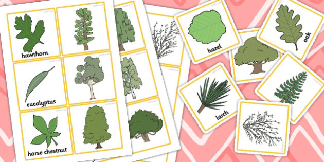 Trees and Leaves Match Up Game -games, activities, matching