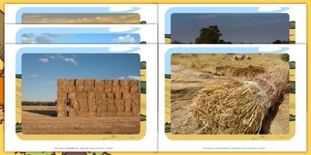 Harvest Hay Bale Display Photos - autumn, seasons, farm, farming