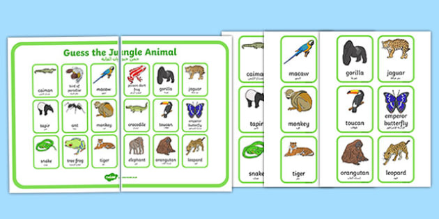Guess the Jungle Animal Game Arabic Translation - guess the jungle animal, jungle, guess, animal, guess who, game, activity, jungel, arabic, translation
