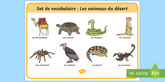 Desert Animals French Word Mat - Animals, desert, word, mat, désert, animal, animaux