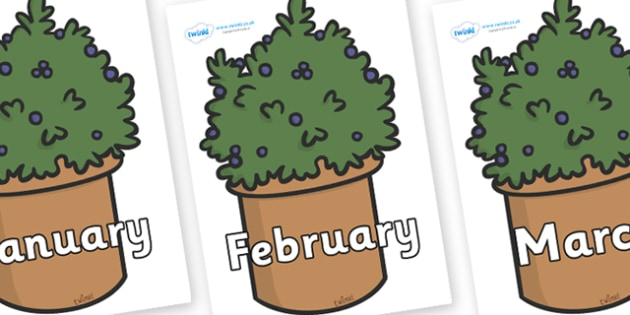 Months of the Year on Plants - Months of the Year, Months poster, Months display, display, poster, frieze, Months, month, January, February, March, April, May, June, July, August, September