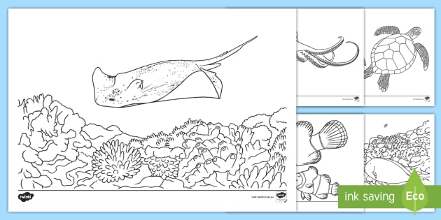 - Great Barrier Reef Coloring Pages (teacher Made)