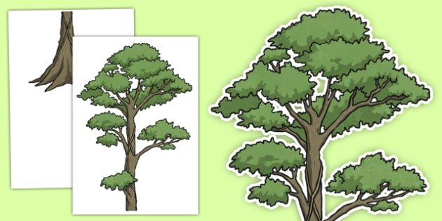 Rainforest Tree Large Display Cut Out - rainforest, tree, display, cut out