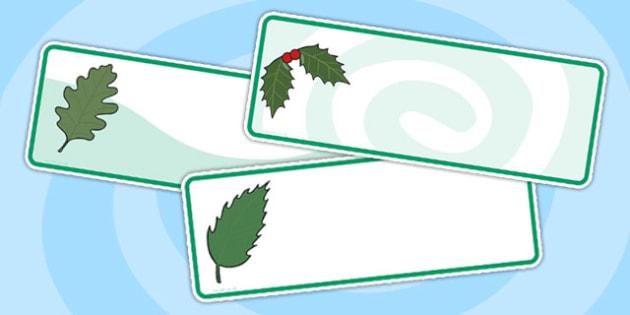 Editable Green Leaf Drawer Labels - leaf, leaves, drawer labels, drawer peg name labels, peg labels, labels, self reg, self registration, class management