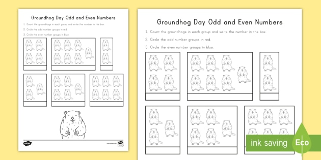 groundhog day odd and even math worksheet  worksheet  groundhog day groundhog day odd and even math worksheet  worksheet  groundhog day  worksheet groundhog day