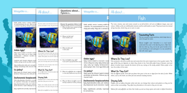 Fish Differentiated Comprehension Activity Sheets English/Polish