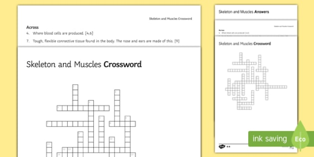 Ks3 skeleton and muscles crossword ccuart Gallery