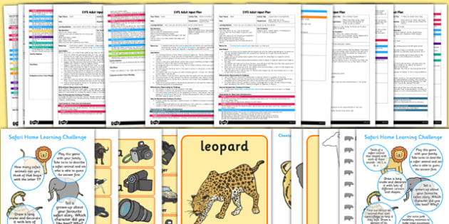 EYFS Safari Themed Adult Input Planning and Resource Pack - safari, adult