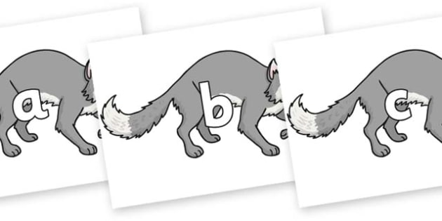 Phase 2 Phonemes on Wolf - Phonemes, phoneme, Phase 2, Phase two, Foundation, Literacy, Letters and Sounds, DfES, display