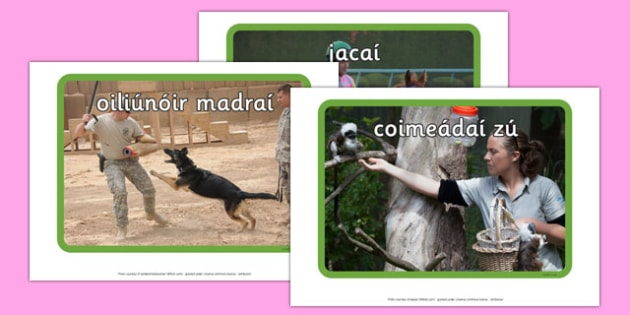 Working with Animals Display Photos Gaeilge - display, photos, occupations, working with animals, Gaeilge, Irish