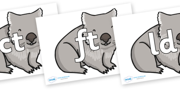 Final Letter Blends on Wombat - Final Letters, final letter, letter blend, letter blends, consonant, consonants, digraph, trigraph, literacy, alphabet, letters, foundation stage literacy