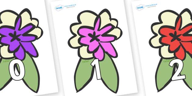 Numbers 0-50 on Corsages - 0-50, foundation stage numeracy, Number recognition, Number flashcards, counting, number frieze, Display numbers, number posters