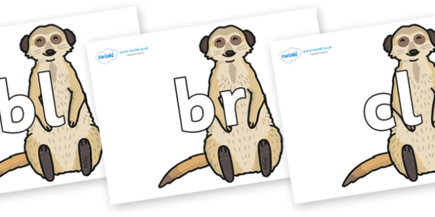 Initial Letter Blends on Meerkats - Initial Letters, initial letter, letter blend, letter blends, consonant, consonants, digraph, trigraph, literacy, alphabet, letters, foundation stage literacy