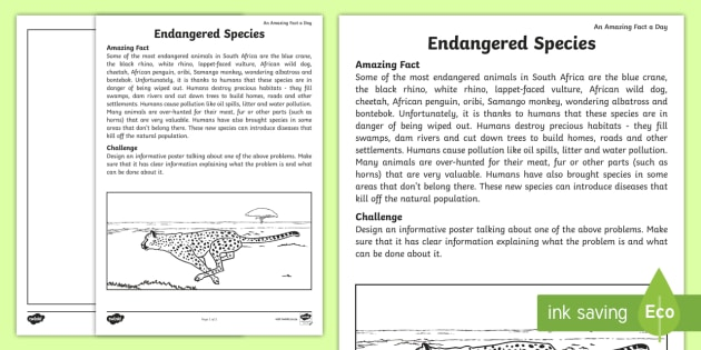 endangered animals worksheet activity sheet an amazing fact. Black Bedroom Furniture Sets. Home Design Ideas