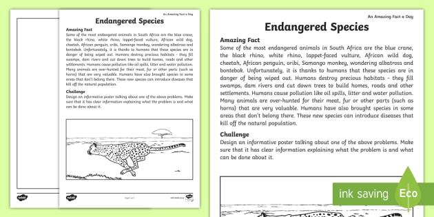 endangered animals worksheet worksheet an amazing fact a day extinct. Black Bedroom Furniture Sets. Home Design Ideas