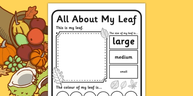 Leaf Worksheet - leaf worksheet, leaf, leaves, collecting
