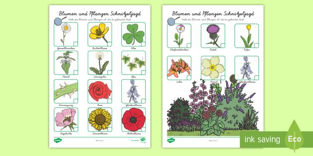 NEW * Blumen und Pflanzen Schnitzeljagd Aktivität