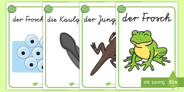 Der Lebenszyklus des Frosches Poster DIN A4 - Frühling, Frosch