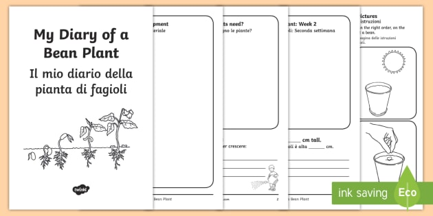 my diary of a bean plant activity booklet english/italian