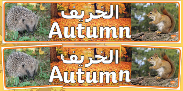 Autumn Photo Display Banner Arabic/English