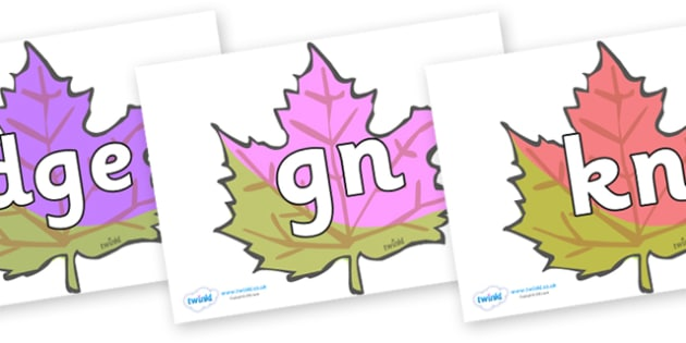 Silent Letters on Autumn Leaves - Silent Letters, silent letter, letter blend, consonant, consonants, digraph, trigraph, A-Z letters, literacy, alphabet, letters, alternative sounds