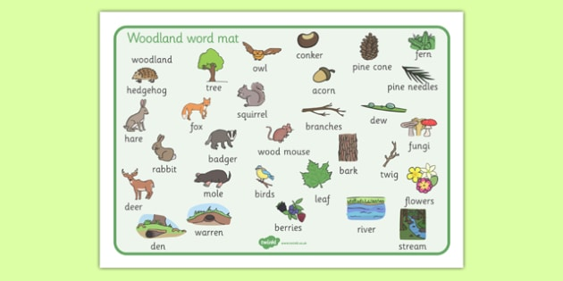 Woodland Word Mat Woodland Trees Word Mat Mat