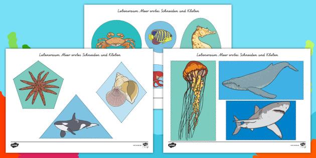 NEW * Lebensraum Meer Arbeitsblatt: Erstes Schneiden und