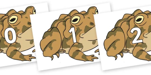 Numbers 0-50 on Toad - 0-50, foundation stage numeracy, Number recognition, Number flashcards, counting, number frieze, Display numbers, number posters