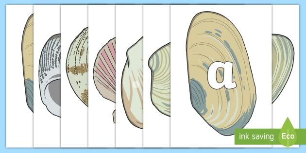 A-Z Alphabet on Sea Shells - Sea, seaside, shell, A4, display, Alphabet frieze, Display letters, Letter posters, A-Z letters, Alphabet flashcards, Under the sea, display, water, tide, fish, sea creatures, shark, whale, marine, dolphin, starfish, wav