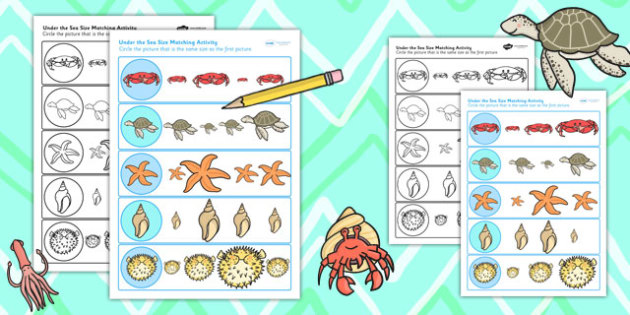 Under the Sea Differentiated Size Matching Worksheets - sizes