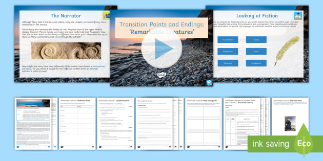 AQA P1 Reading Booklet Lesson Pack - AQA P1 Reading Booklet, paper one, GCSE revision, Remarkable Creatures, Tracy Chevalier, Mary Anning