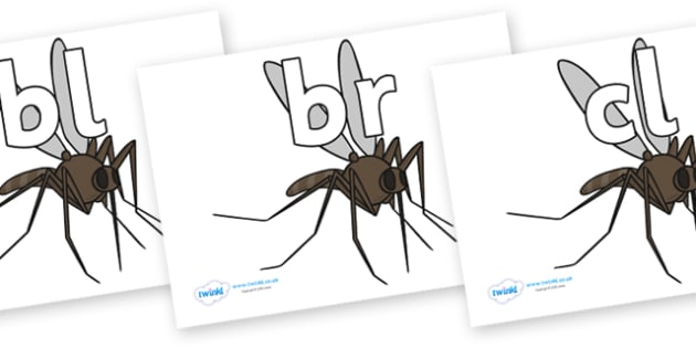 Initial Letter Blends on Mosquitos - Initial Letters, initial letter, letter blend, letter blends, consonant, consonants, digraph, trigraph, literacy, alphabet, letters, foundation stage literacy